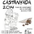 ##castanyes1